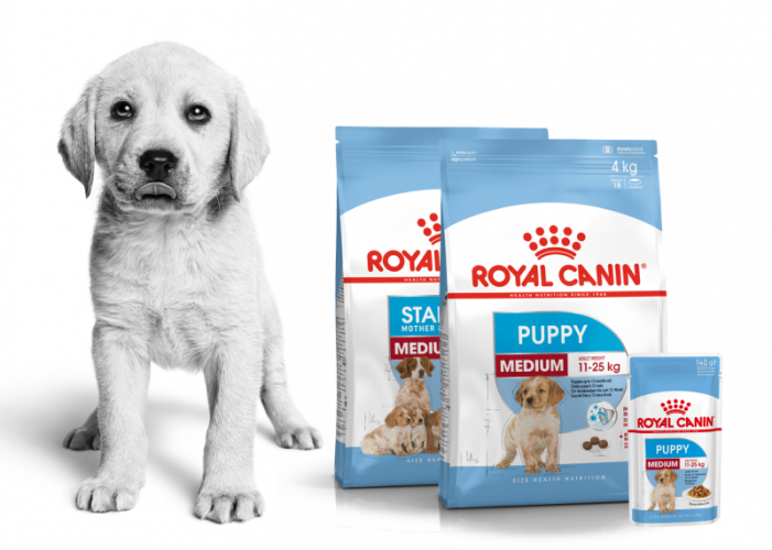 Royal Canin Retail Nutrition